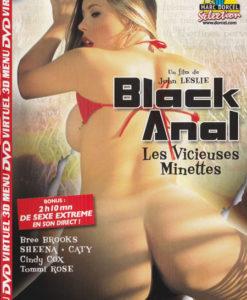 Black anal et les vicieuses minettes cover face