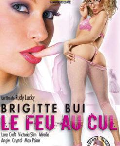 Brigitte Bui Le feu au cul cover face
